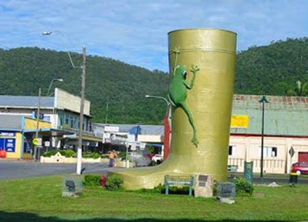 Golden gumboot, Tully